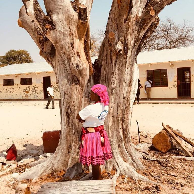 Ondobe Tree