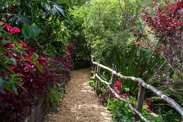 Path in Wendy's Secret Garden © Teresa Parker / Flickr