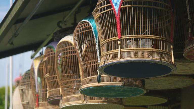 Kebun Baru Bird-Singing Club