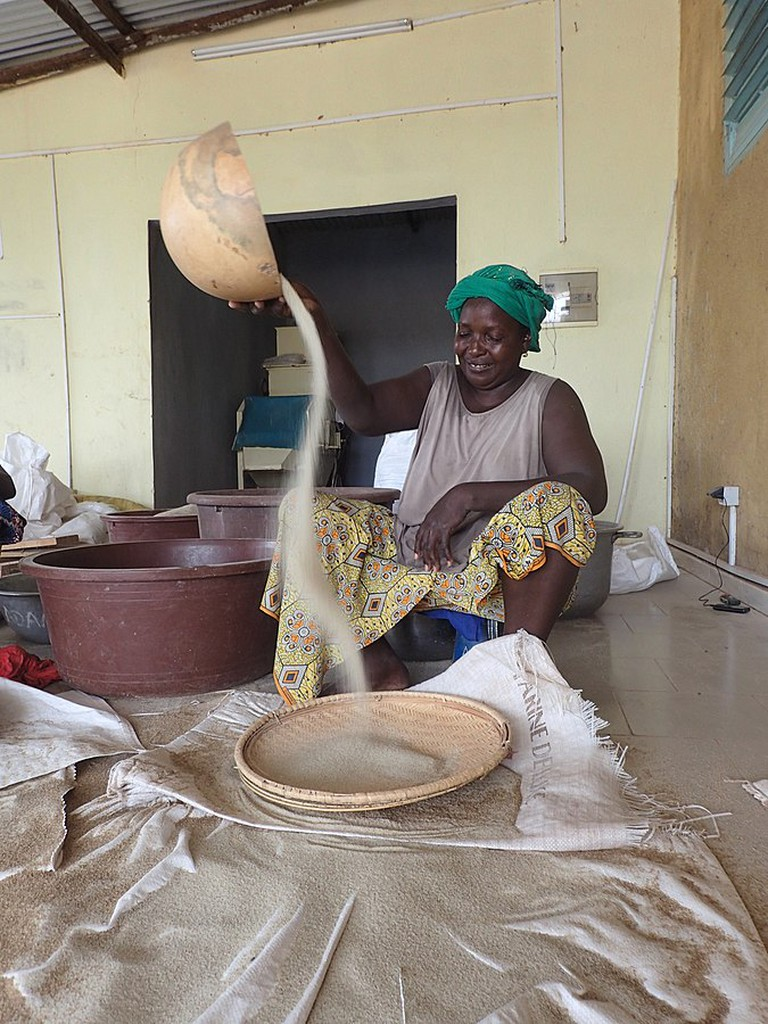 After threshing, a woman winnows fonio to separate dirt and grain