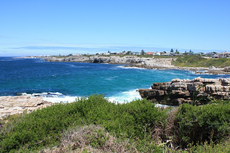 The Hermanus coastline is famous for its whale-watching opportunities