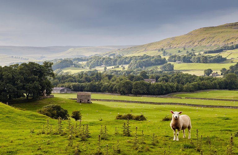The Yorkshire Dales.