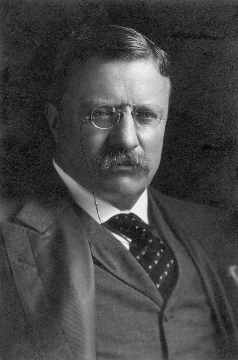Theodore Roosevelt (1858-1919).