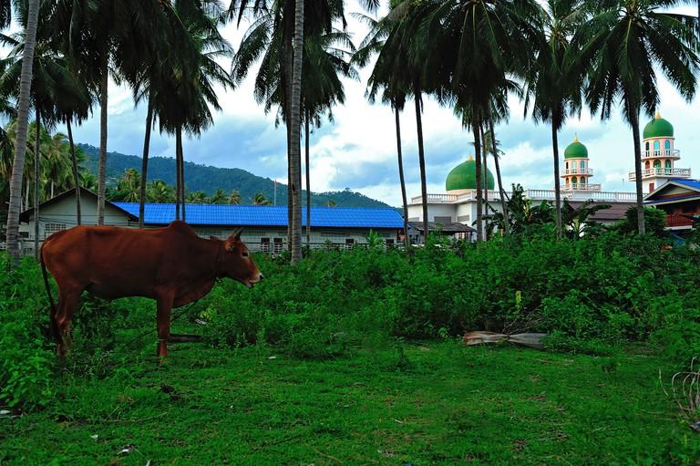 Narun ia San Mosque in Koh Samui, Surat Thani, Thailand.