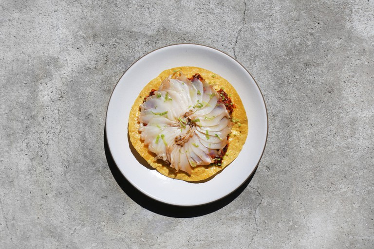 Abalone at Cosme, New York, USA.