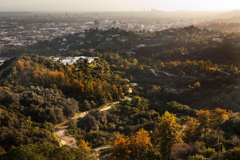 View of Los Angeles from Griffith Park, Los Angeles, California, USA.