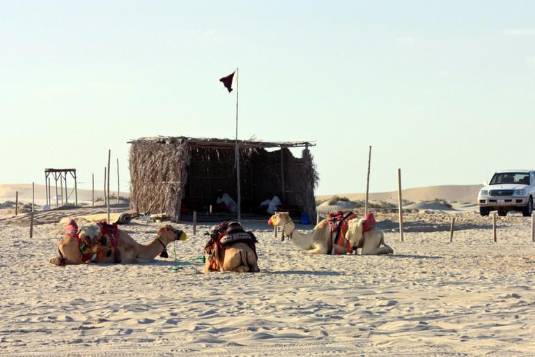 Desert camp site at Sealine Beach, Qatar
