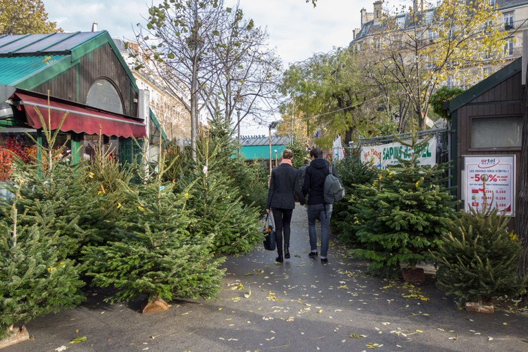 Christmas tree market at the Place des Ternes, Paris