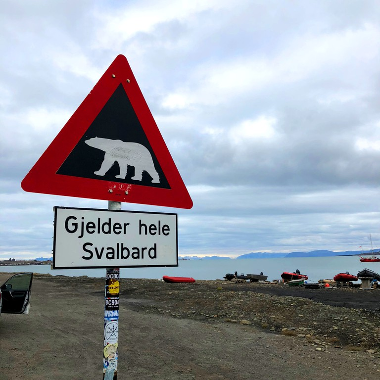 Watch out for polar bears!