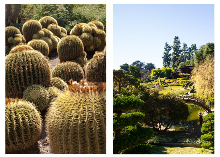 The Huntington Library, Art Collections, and Botanical Gardens is a must-see