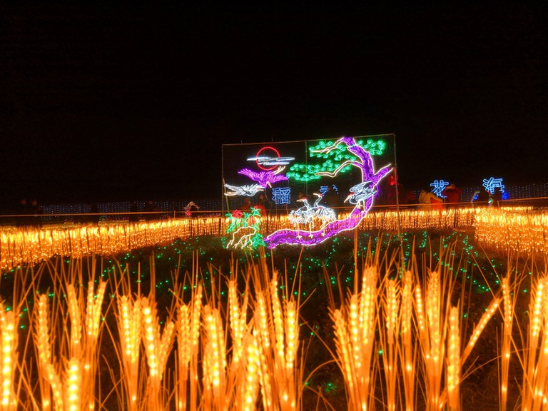 The spectacular lighting show can be seen at Sanyuan Agricultural Technology Park marking the upcoming Lantern Festival