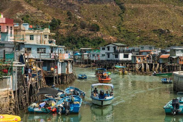 The endangered white dolphin lives in Tai O