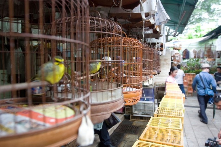 Bird cages at the bird Market in Hong Kong