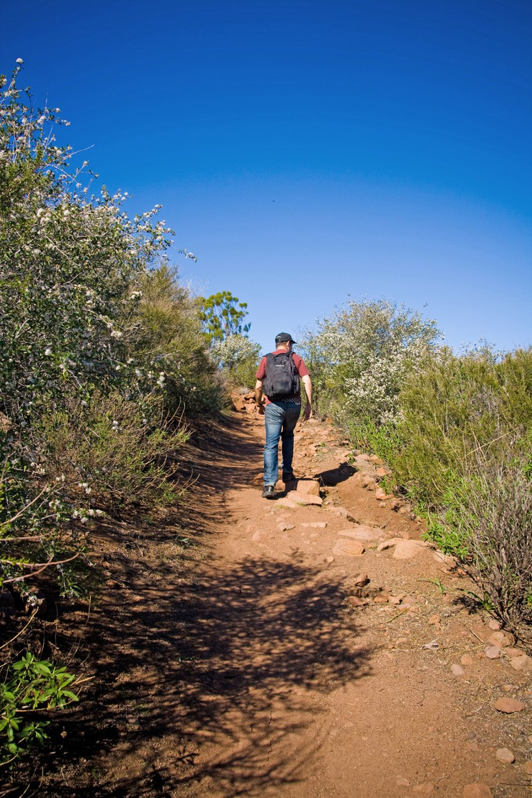 Hiker on the Santa Monica mountains