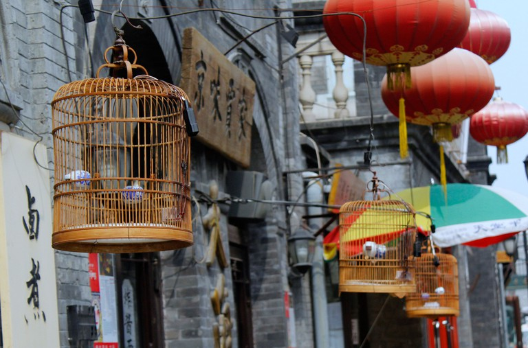Traditional bird cages in the Hutong alleys, Beijing, China