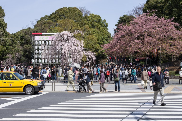 Entrance to Ueno Park with cherry blossoms already partially in full bloom, Tokyo, Japan. Image shot 04/2013. Exact date unknown.