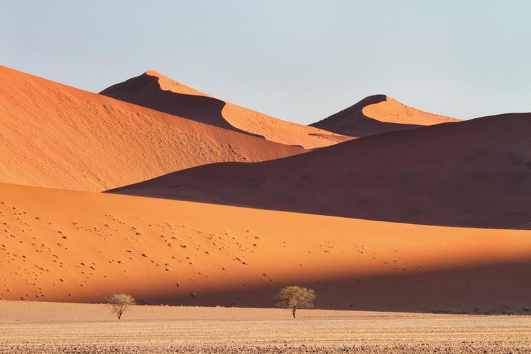 Sand dunes in the Namib desert in the Namib-Naukluft National Park of Namibia