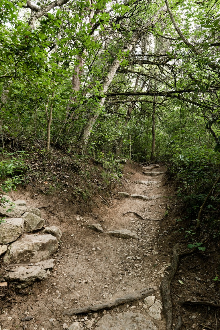Hike and Bike trail in Barton Creek Greenbelt in Austin Texas USA.