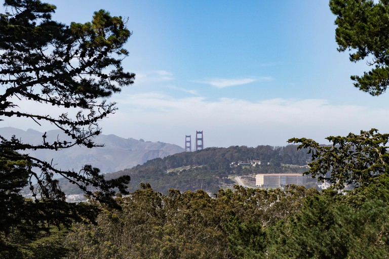 Follow the Buena Vista Park trails to the top and be rewarded with stunning San Francisco city views.