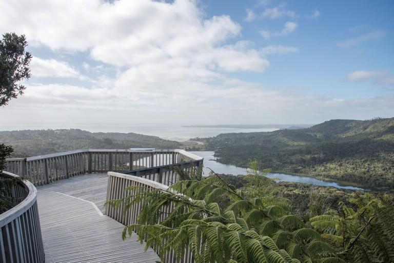 The Waitakere Ranges in Auckland, New Zealand