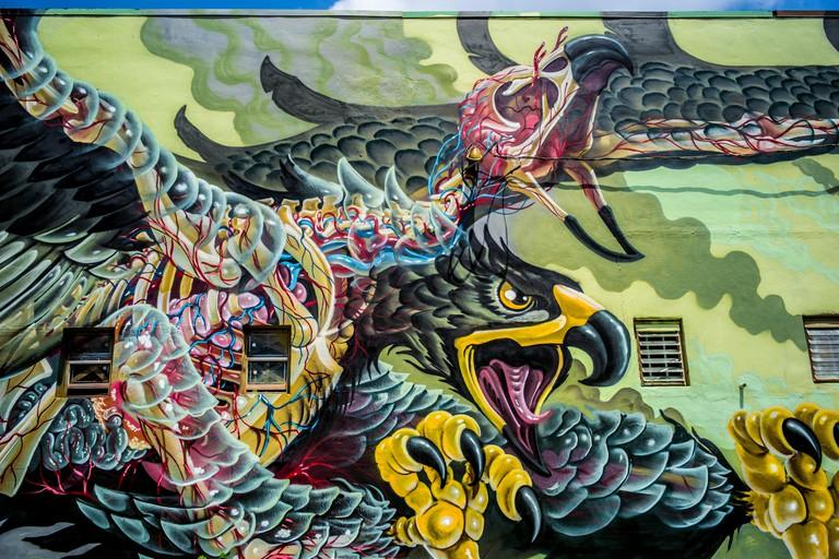 Graffiti. Wynwood Art District. Miami. Florida. USA