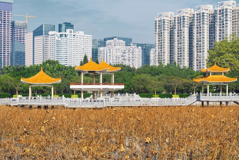 Day time view of the city park. Shenzhen. China.
