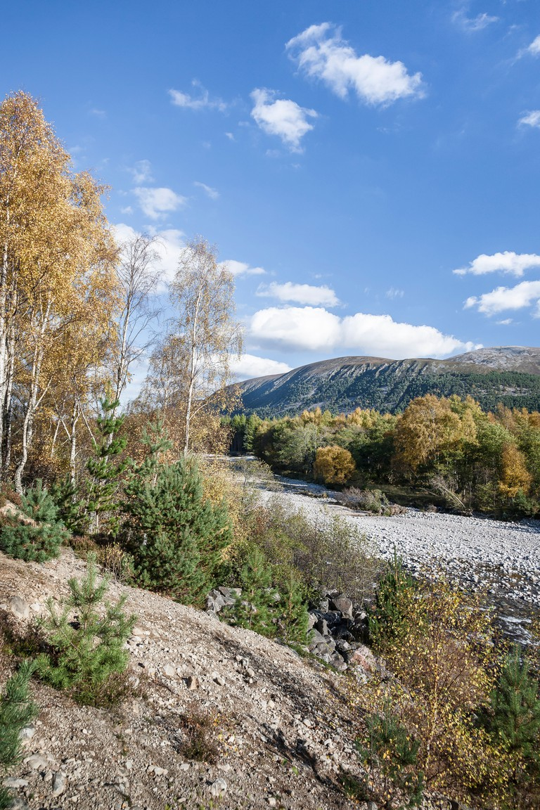 Glen Feshie in the Cairngorms National Park of Scotland.