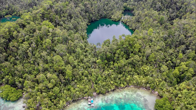 An aerial view of Jellyfish Lake