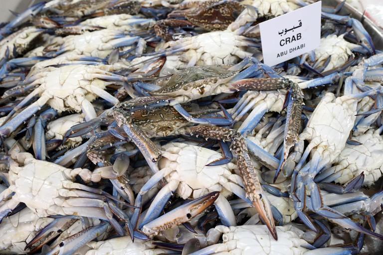 Mina Fish Market, Abu Dhabi