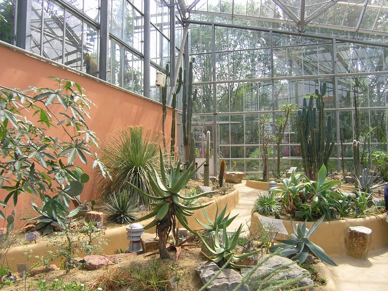 Desert greenhouse at the gardens