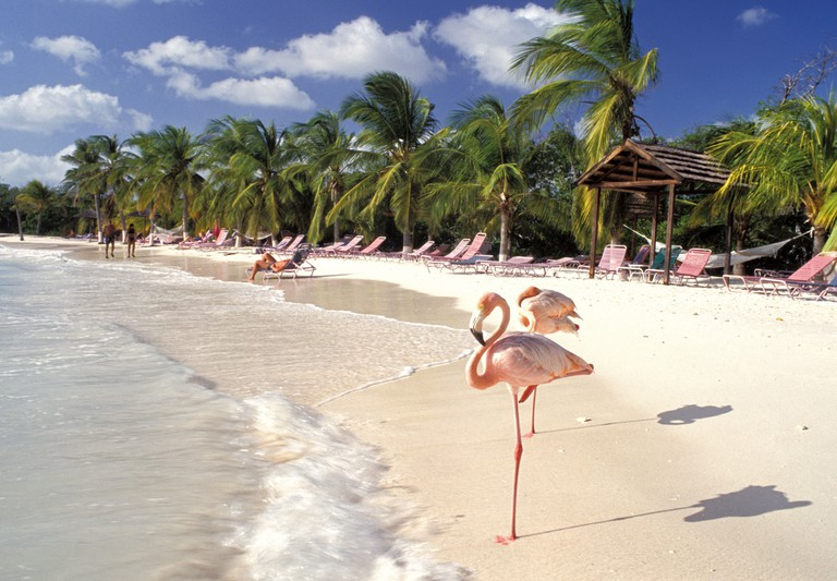 Sonesta Island, Aruba