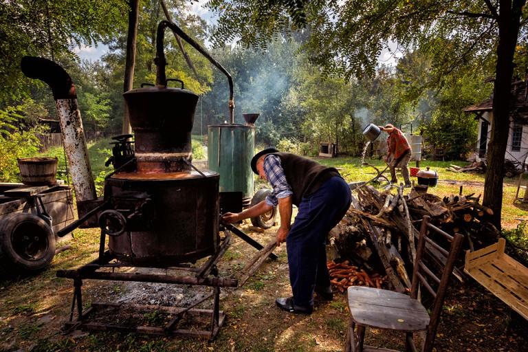Competition in the distilling, Macvanski Metkovic, Serbia