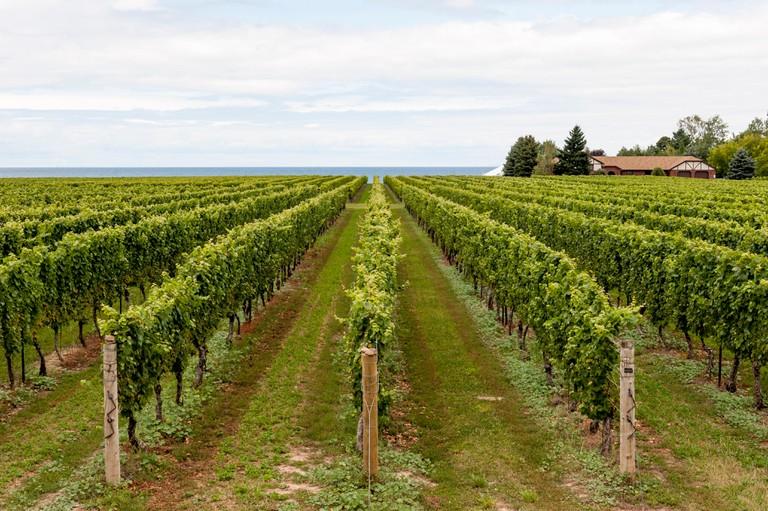 Konzelmann Estate Winery, Niagara on the Lake, Ontario, Canada.