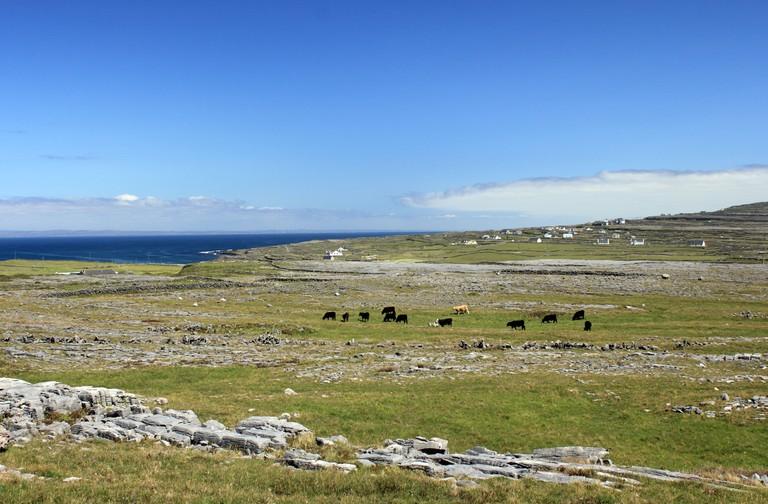 Karst landscape around Dun Aonghasa, Inishmore, the largest of the Aran Islands, Ireland.