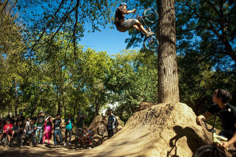 A rider named Zach fakie tree-rides at Autin's famous 9th St trails during a BMX jam.