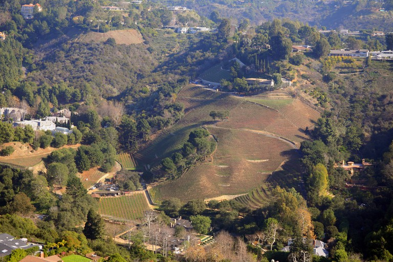 Aerial view, winery, California, USA.