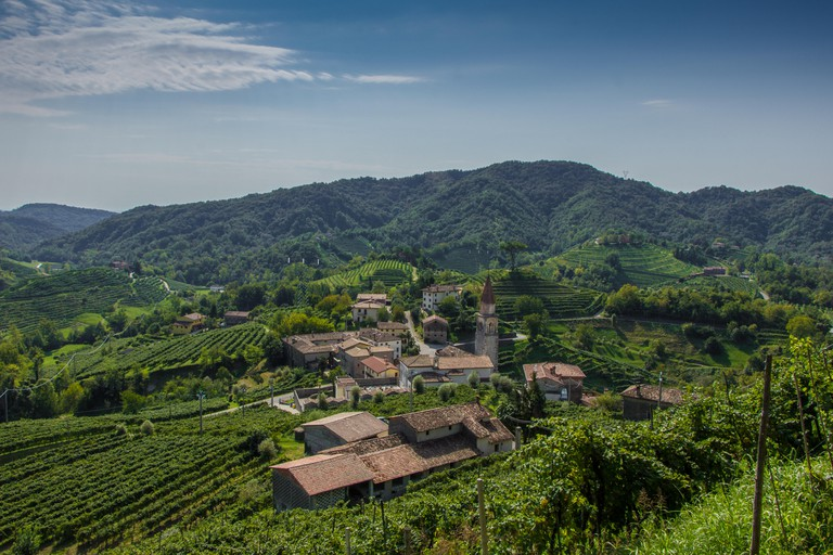 A landscape view of Prosecco vineyards in Treviso, Veneto, Italy.