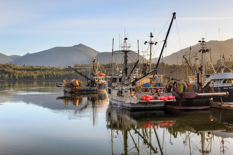 Fishing boats, Ucluelet Harbour, Vancouver Island, British Columbia, Canada