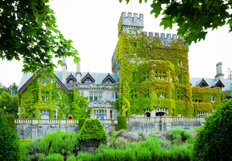 Facade and ivy of Hatley Castle at Royal Roads University