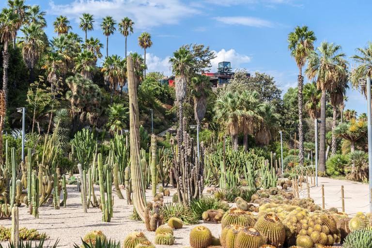 Mossen Costa i LLobera, Montjuic park, Barcelona.