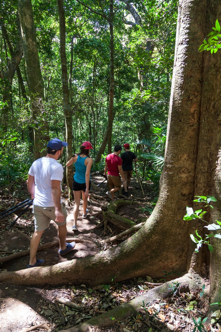 group of friends hiking in the Rincon de la Vieja National Park in Costa Rica