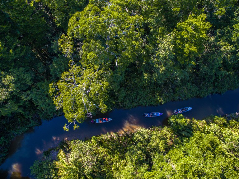 Bike and Tours organizes boat explorations of Sungai Kapur, a primary mangrove rainforest that until now has seen very few visitors