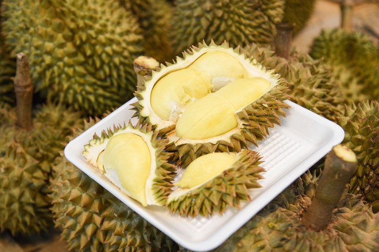 Fresh durian peeled on tray and ripe durian tropical fruit on background