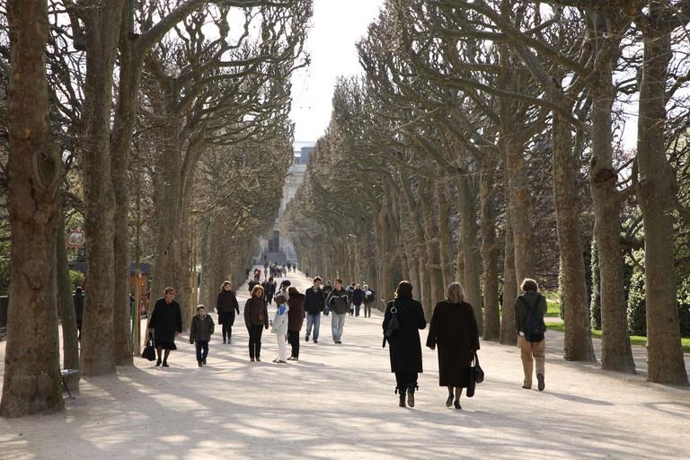 Jardin des Plantes Park in winter, Paris, France.
