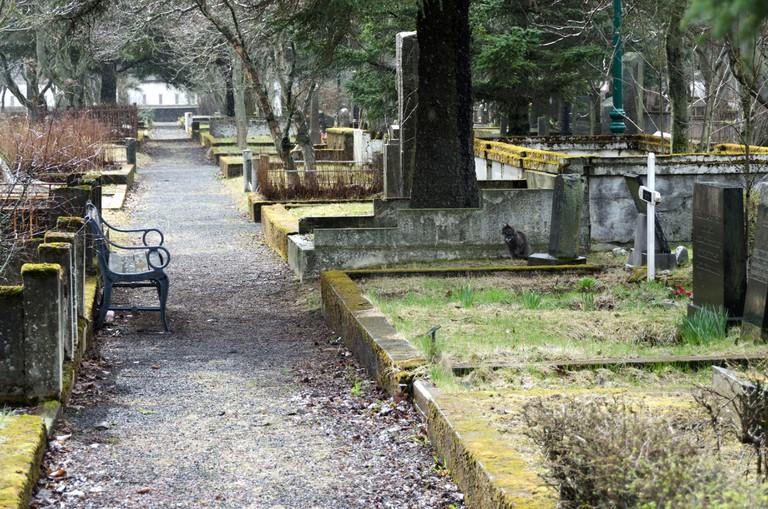 Graveyard in Reykjavik
