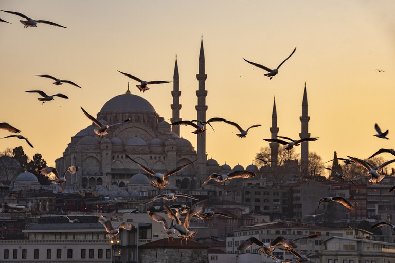 The Suleymaniye Mosque and seagulls at sunset in Istanbul, Turkey