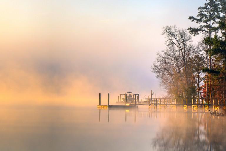 Misty Morning Px