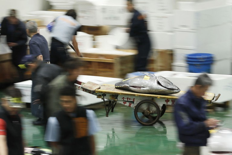 Tuna is carried by handcart after an auction at the Toyosu fish market in Tokyo