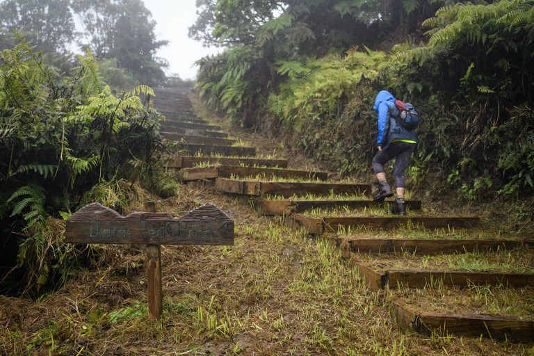 Hike guide Val Joshua walks on Diana's Peak