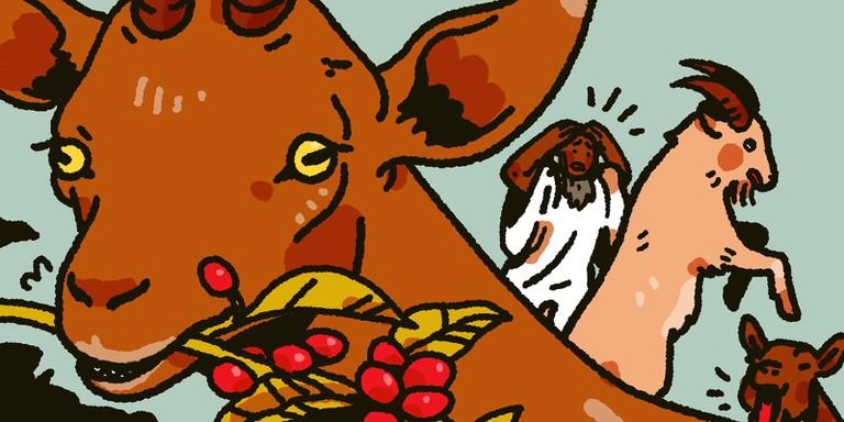 IA_0805_Ethiopia Coffee Rituals_Amy Matsushita-Beal_Final_Spot2